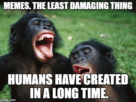 Bonobo Lyfe | MEMES. THE LEAST DAMAGING THING HUMANS HAVE CREATED IN A LONG TIME. | image tagged in memes,bonobo lyfe | made w/ Imgflip meme maker