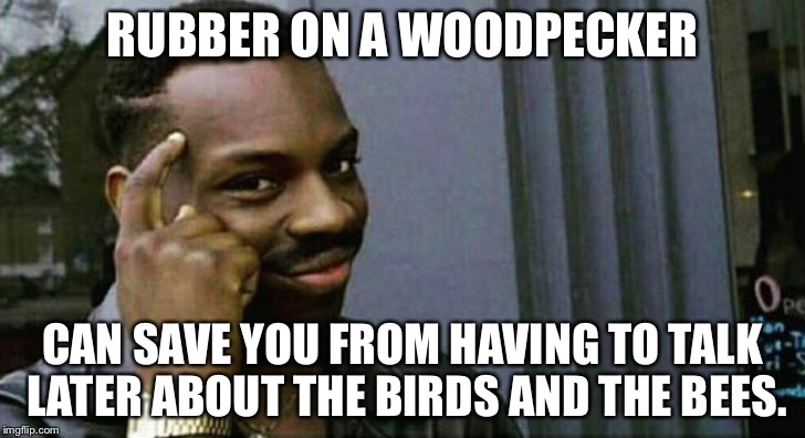 Birds and bees | RUBBER ON A WOODPECKER CAN SAVE YOU FROM HAVING TO TALK LATER ABOUT THE BIRDS AND THE BEES. | image tagged in you can't x if you x,birds and bees,abstinence,condoms,sex jokes,relationship advice | made w/ Imgflip meme maker