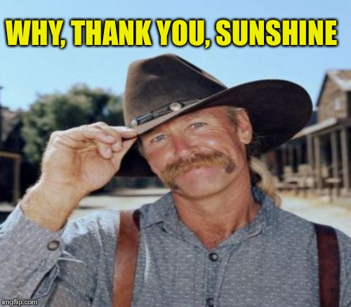 WHY, THANK YOU, SUNSHINE | made w/ Imgflip meme maker