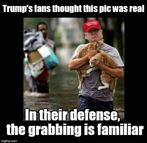 New Experience, Old Habit | Trump's fans thought this pic was real In their defense,  the grabbing is familiar | image tagged in donald trump,trump,trump pussy grab,pussy grabber,trump houston picture,trump in houston | made w/ Imgflip meme maker