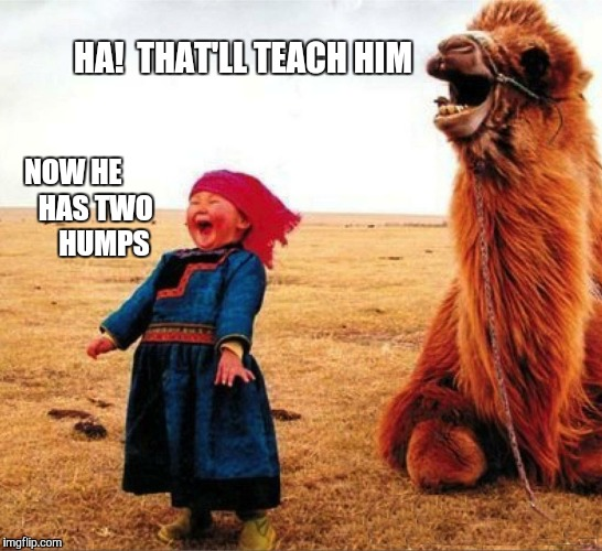 HA!  THAT'LL TEACH HIM NOW HE        HAS TWO         HUMPS | made w/ Imgflip meme maker