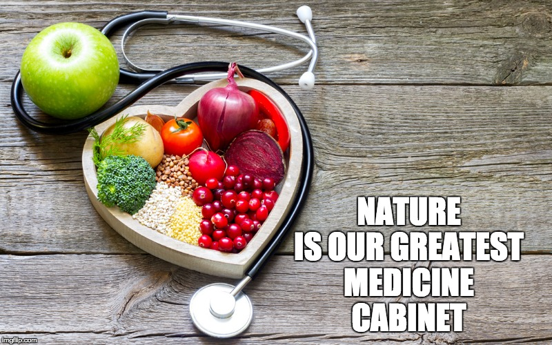 Healthy Foods | NATURE IS OUR GREATEST MEDICINE CABINET | image tagged in health,wellness,nature,eating | made w/ Imgflip meme maker