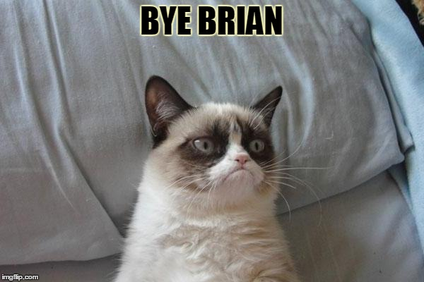 BYE BRIAN | made w/ Imgflip meme maker
