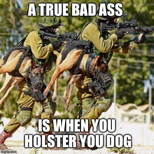 Bad asses | A TRUE BAD ASS IS WHEN YOU HOLSTER YOU DOG | image tagged in dogs,military,holstered dog | made w/ Imgflip meme maker