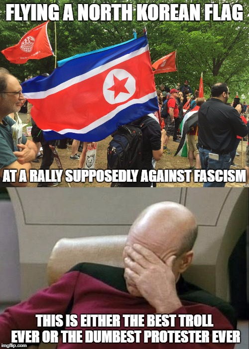 Meanwhile At Your Local Antifa Rally... | FLYING A NORTH KOREAN FLAG AT A RALLY SUPPOSEDLY AGAINST FASCISM THIS IS EITHER THE BEST TROLL EVER OR THE DUMBEST PROTESTER EVER | image tagged in antifa,north korea,captain picard facepalm | made w/ Imgflip meme maker