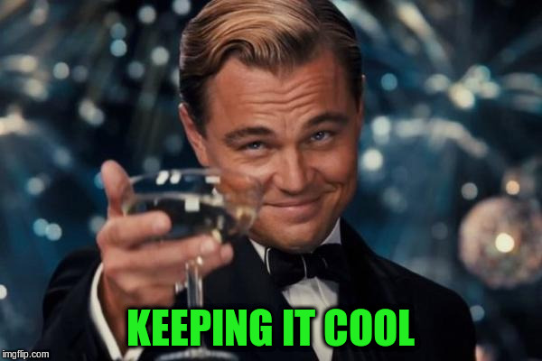 Leonardo Dicaprio Cheers Meme | KEEPING IT COOL | image tagged in memes,leonardo dicaprio cheers | made w/ Imgflip meme maker