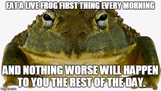 Eat a Live Frog | EAT A LIVE FROG FIRST THING EVERY MORNING AND NOTHING WORSE WILL HAPPEN TO YOU THE REST OF THE DAY. | image tagged in frog,mark twain thought | made w/ Imgflip meme maker