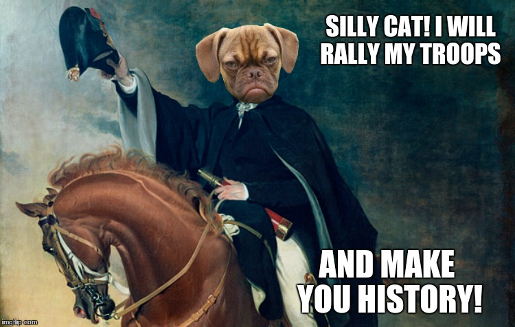 SILLY CAT! I WILL RALLY MY TROOPS AND MAKE YOU HISTORY! | made w/ Imgflip meme maker