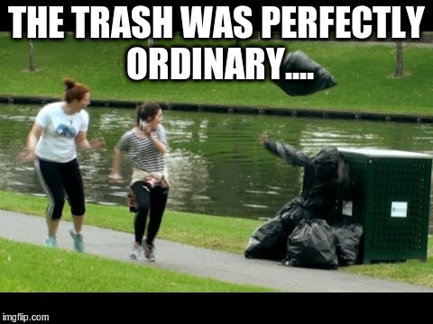 THE TRASH WAS PERFECTLY ORDINARY.... | made w/ Imgflip meme maker