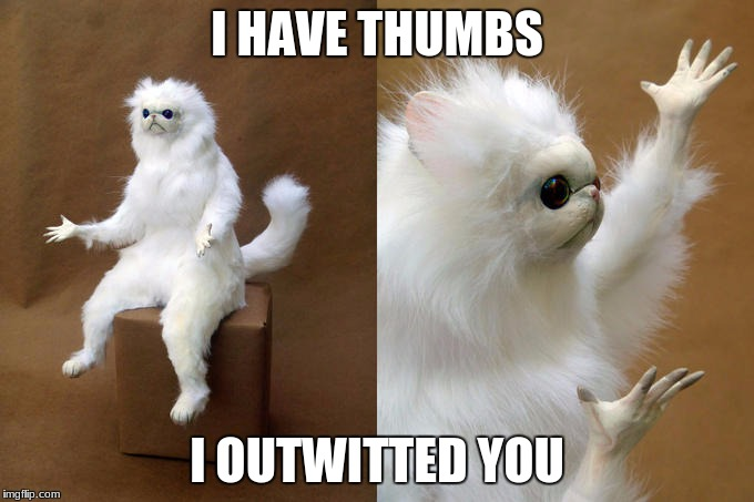 Persian Cat Room Guardian Meme | I HAVE THUMBS I OUTWITTED YOU | image tagged in memes,persian cat room guardian | made w/ Imgflip meme maker
