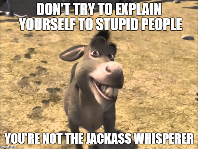 Donkey Shrek | DON'T TRY TO EXPLAIN YOURSELF TO STUPID PEOPLE YOU'RE NOT THE JACKASS WHISPERER | image tagged in donkey shrek | made w/ Imgflip meme maker