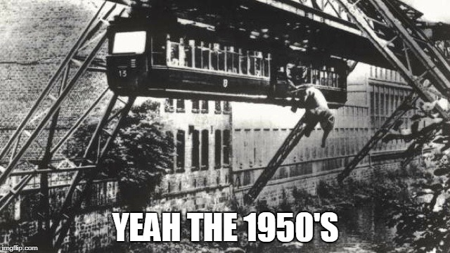 The 50's Were Crazy... | YEAH THE 1950'S | image tagged in elephant,memes,funny,1950s | made w/ Imgflip meme maker