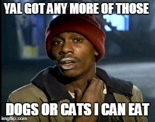 Y'all Got Any More Of That Meme | YAL GOT ANY MORE OF THOSE DOGS OR CATS I CAN EAT | image tagged in memes,yall got any more of | made w/ Imgflip meme maker