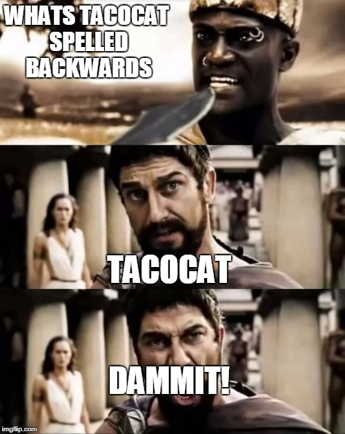 This Is Sparta meme |  WHATS TACOCAT SPELLED BACKWARDS; TACOCAT; DAMMIT! | image tagged in this is sparta meme | made w/ Imgflip meme maker