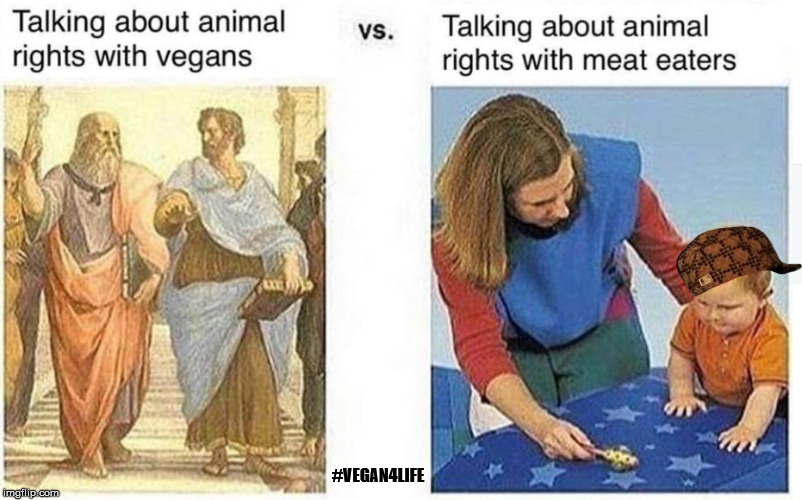 Tell me more about why you're not vegans yet!  | #VEGAN4LIFE | image tagged in vegan,vegan4life,memes,funny memes | made w/ Imgflip meme maker