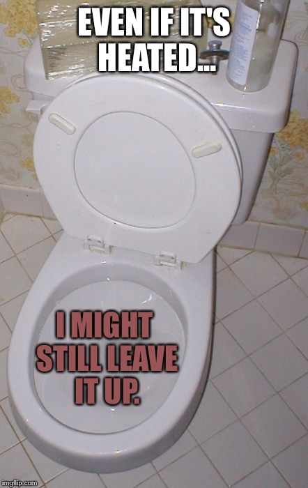 Toilet | EVEN IF IT'S HEATED... I MIGHT STILL LEAVE IT UP. | image tagged in toilet | made w/ Imgflip meme maker