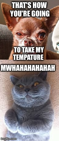 THAT'S HOW YOU'RE GOING TO TAKE MY TEMPATURE MWHAHAHAHAHAH | image tagged in happy | made w/ Imgflip meme maker