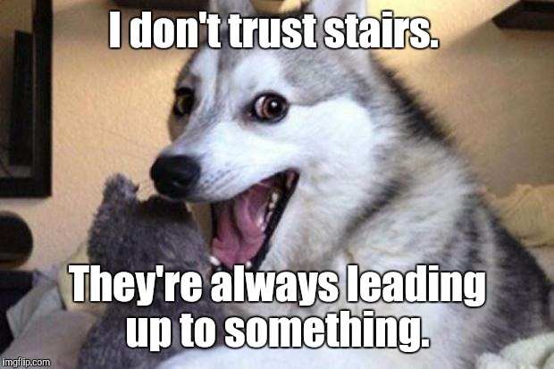I don't trust stairs. They're always leading up to something. | made w/ Imgflip meme maker