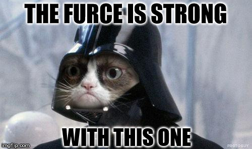 THE FURCE IS STRONG WITH THIS ONE | made w/ Imgflip meme maker