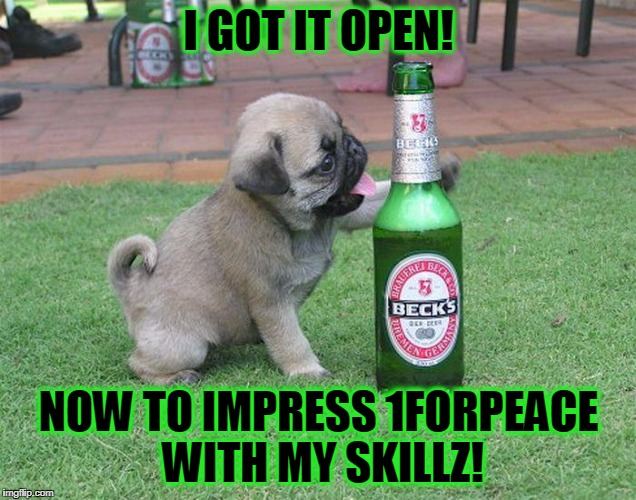 I GOT IT OPEN! NOW TO IMPRESS 1FORPEACE WITH MY SKILLZ! | made w/ Imgflip meme maker