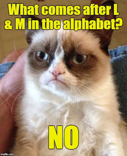 Grumpy Cat Meme | What comes after L & M in the alphabet? NO | image tagged in memes,grumpy cat | made w/ Imgflip meme maker