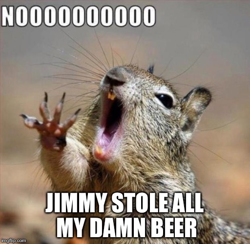 noooooooooooooooooooooooo | JIMMY STOLE ALL MY DAMN BEER | image tagged in noooooooooooooooooooooooo | made w/ Imgflip meme maker