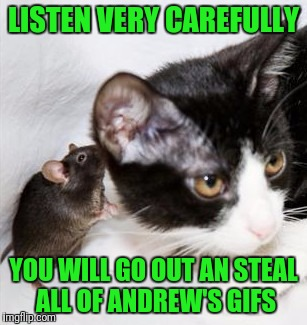 LISTEN VERY CAREFULLY YOU WILL GO OUT AN STEAL ALL OF ANDREW'S GIFS | made w/ Imgflip meme maker