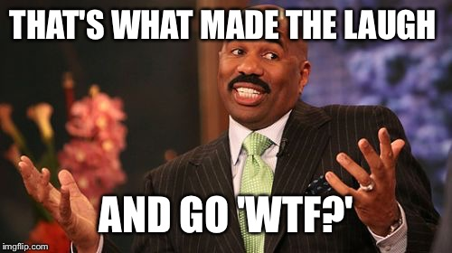 Steve Harvey Meme | THAT'S WHAT MADE THE LAUGH AND GO 'WTF?' | image tagged in memes,steve harvey | made w/ Imgflip meme maker