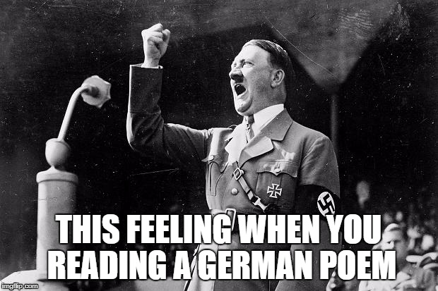 THIS FEELING WHEN YOU READING A GERMAN POEM | image tagged in nazi,memes,hitler | made w/ Imgflip meme maker