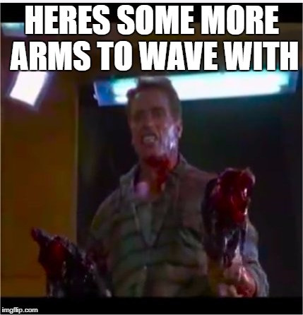 See you at the party Victor | HERES SOME MORE ARMS TO WAVE WITH | image tagged in richtor,sounds like victor,arnold schwarzenegger,funny memes | made w/ Imgflip meme maker