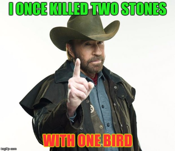 that one time he chose scissors, that was a scissor tail swallow he used | I ONCE KILLED TWO STONES WITH ONE BIRD | image tagged in memes,chuck norris,dank memes,funny,deth_by_dodo,chuck norris finger | made w/ Imgflip meme maker