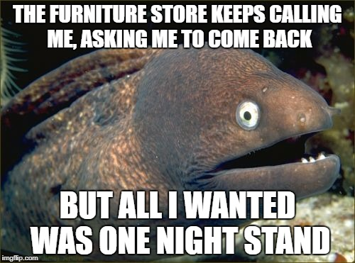 Bad Joke Eel Meme | THE FURNITURE STORE KEEPS CALLING ME, ASKING ME TO COME BACK BUT ALL I WANTED WAS ONE NIGHT STAND | image tagged in memes,bad joke eel | made w/ Imgflip meme maker