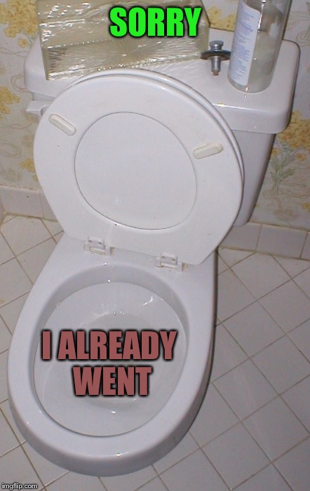 Toilet | SORRY I ALREADY WENT | image tagged in toilet | made w/ Imgflip meme maker