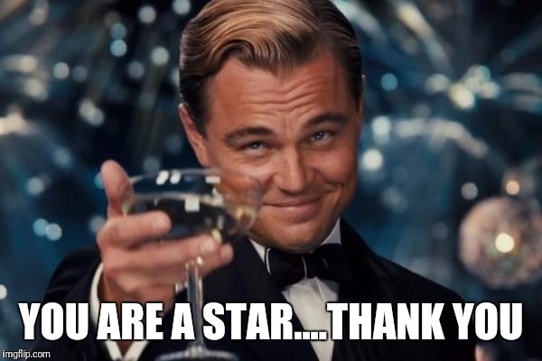 Leonardo Dicaprio Cheers Meme | YOU ARE A STAR....THANK YOU | image tagged in memes,leonardo dicaprio cheers | made w/ Imgflip meme maker
