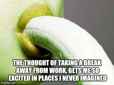THE THOUGHT OF TAKING A BREAK AWAY FROM WORK, GETS ME SO EXCITED IN PLACES I NEVER IMAGINED | image tagged in pleasure | made w/ Imgflip meme maker