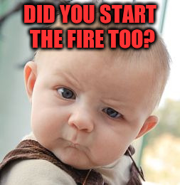 Skeptical Baby Meme | DID YOU START THE FIRE TOO? | image tagged in memes,skeptical baby | made w/ Imgflip meme maker