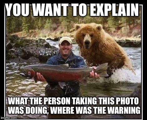 Catch of the day | YOU WANT TO EXPLAIN WHAT THE PERSON TAKING THIS PHOTO WAS DOING, WHERE WAS THE WARNING | image tagged in selfie,buddy system,bear,fishing,fish,fisherman | made w/ Imgflip meme maker