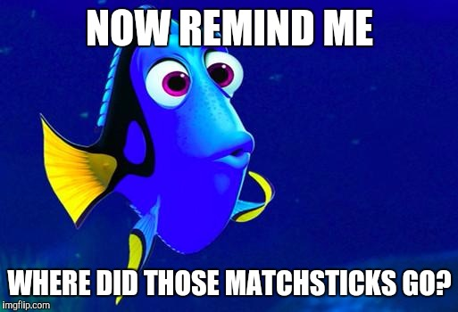 Bad Memory Fish | NOW REMIND ME WHERE DID THOSE MATCHSTICKS GO? | image tagged in bad memory fish | made w/ Imgflip meme maker