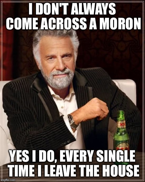 The Most Interesting Man In The World Meme | I DON'T ALWAYS COME ACROSS A MORON YES I DO, EVERY SINGLE TIME I LEAVE THE HOUSE | image tagged in memes,the most interesting man in the world | made w/ Imgflip meme maker