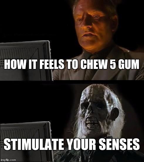 Have some 5 gum  | HOW IT FEELS TO CHEW 5 GUM STIMULATE YOUR SENSES | image tagged in memes | made w/ Imgflip meme maker
