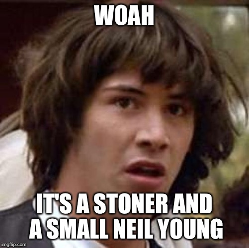 Conspiracy Keanu Meme | WOAH IT'S A STONER AND A SMALL NEIL YOUNG | image tagged in memes,conspiracy keanu | made w/ Imgflip meme maker