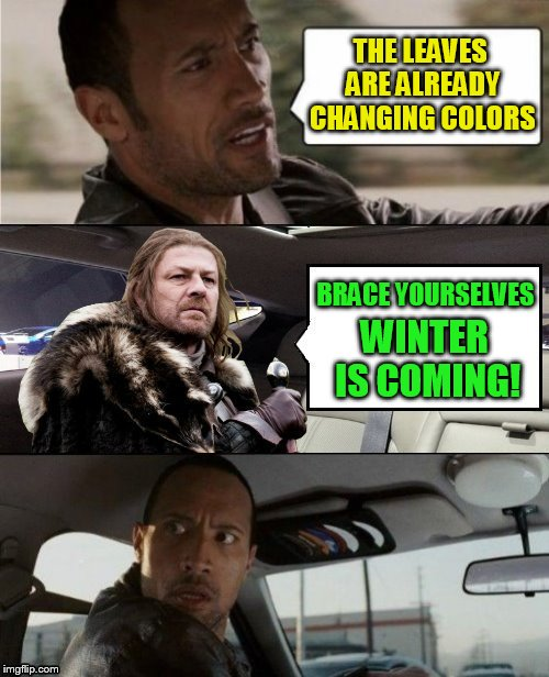 The Rock Driving Eddard Stark | THE LEAVES ARE ALREADY CHANGING COLORS BRACE YOURSELVES WINTER IS COMING! | image tagged in the rock driving,memes,brace yourselves x is coming,winter is coming,fall,autumn | made w/ Imgflip meme maker