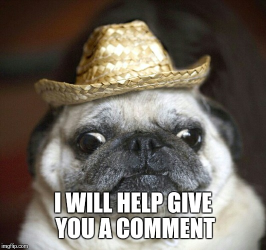 pug life | I WILL HELP GIVE YOU A COMMENT | image tagged in pug life | made w/ Imgflip meme maker
