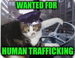 WANTED FOR HUMAN TRAFFICKING | made w/ Imgflip meme maker