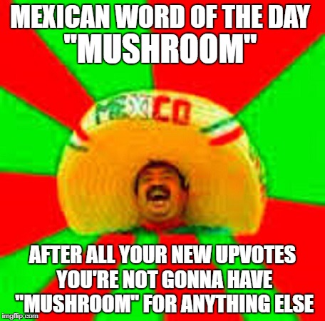 "MEXICAN WORD OF THE DAY AFTER ALL YOUR NEW UPVOTES YOU'RE NOT GONNA HAVE ""MUSHROOM"" FOR ANYTHING ELSE ""MUSHROOM"" 