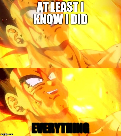 Bardock death meme | AT LEAST I KNOW I DID EVERYTHING | image tagged in bardock death meme | made w/ Imgflip meme maker