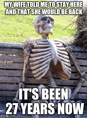 Waiting Skeleton Meme | MY WIFE TOLD ME TO STAY HERE AND THAT SHE WOULD BE BACK IT'S BEEN 27 YEARS NOW | image tagged in memes,waiting skeleton | made w/ Imgflip meme maker