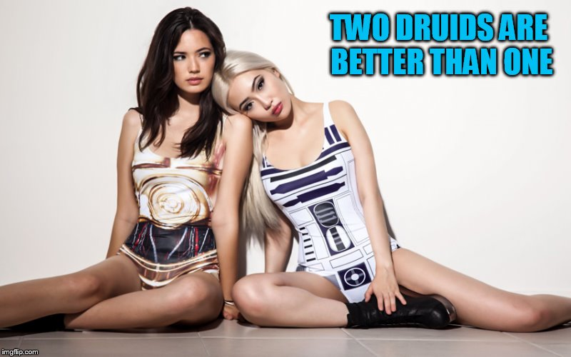 TWO DRUIDS ARE BETTER THAN ONE | made w/ Imgflip meme maker