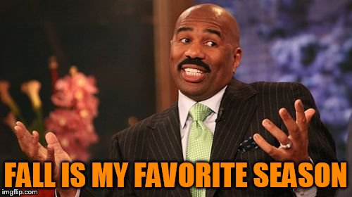 Steve Harvey Meme | FALL IS MY FAVORITE SEASON | image tagged in memes,steve harvey | made w/ Imgflip meme maker