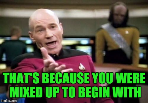 Picard Wtf Meme | THAT'S BECAUSE YOU WERE MIXED UP TO BEGIN WITH | image tagged in memes,picard wtf | made w/ Imgflip meme maker